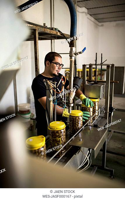 Man in factory at conveyor belt with filled olive glasses