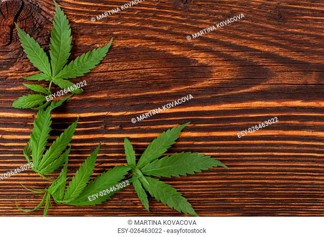 Cannabis buds and foliage on brown wooden table, top view. Medical marijuana, alternative medicine