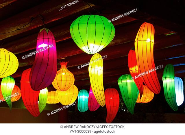 Chinese Lantern Festival to celebrate the Chinese New Year