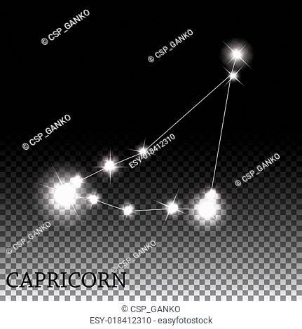 Capricorn Zodiac Sign of the Beautiful Bright Stars