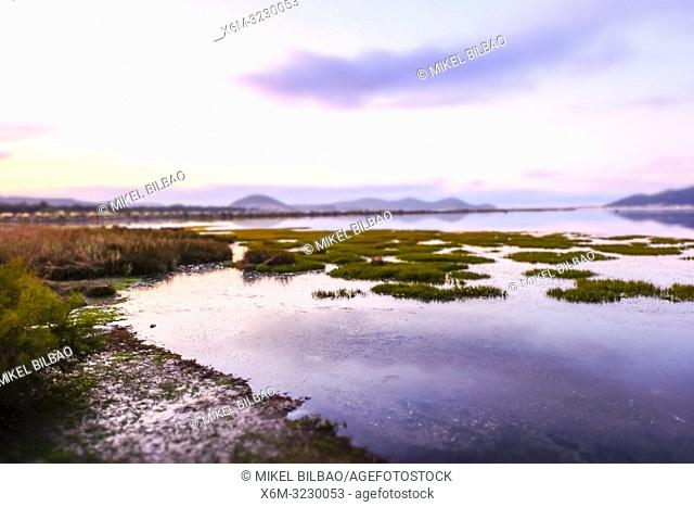 Santoña, Victoria and Joyel Marshes Natural Park. Colindres, Cantabria, Spain, Europe