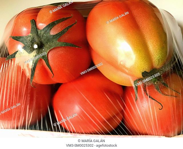 Packed tomatoes in plastic films
