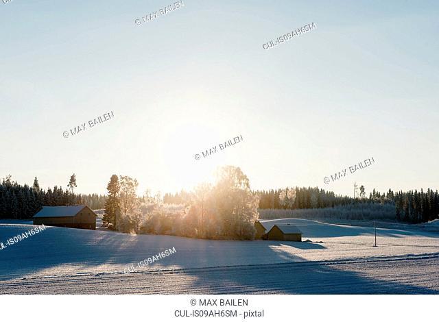 Sun rising over cabins