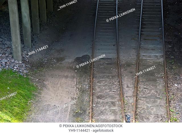 Railroad, Lahti, Finland