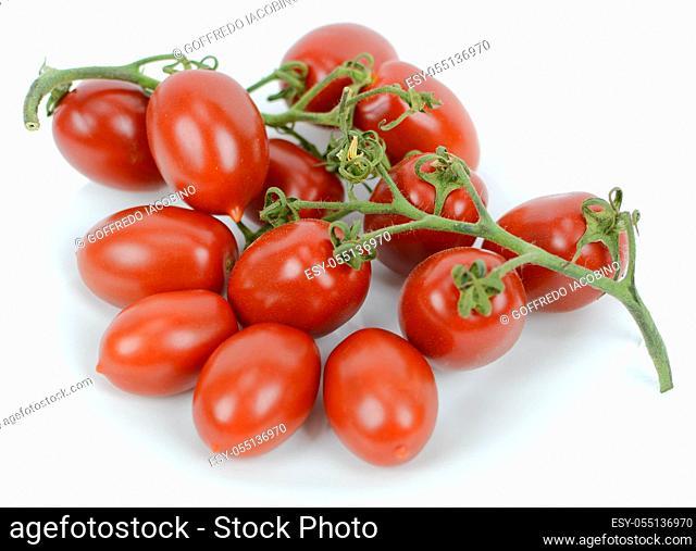 Italian original freshly picked cherry tomatoes