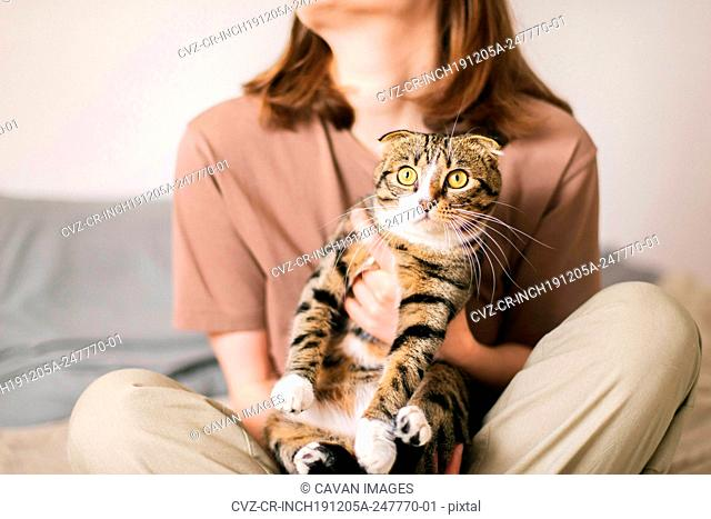 Young woman holding beautiful cat