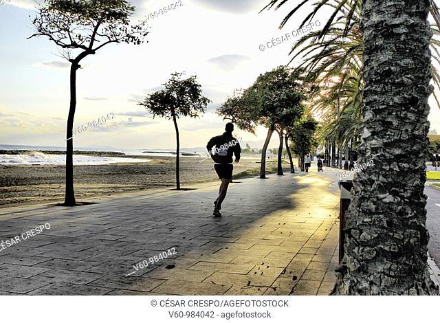 -Runman Along The Beach among Sunset-