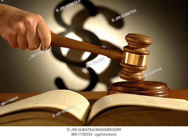 Gavel, legal code book and a section symbol