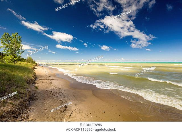 Lake Huron shoreline the Pinery Provincial Park, Ontario, Canada