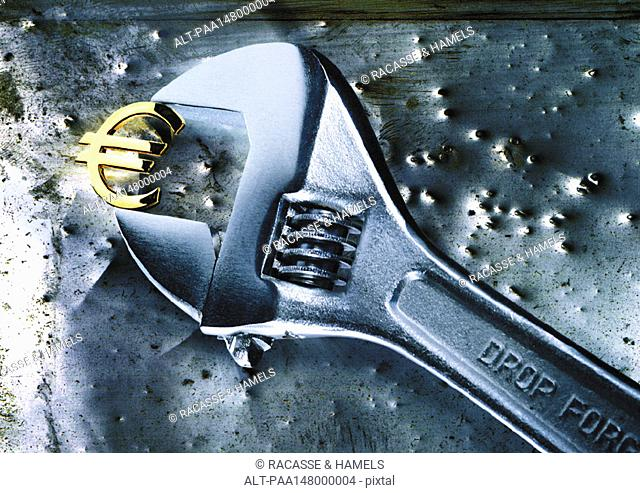 Adjustable wrench clasping gold euro sign