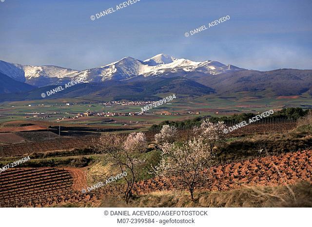 La Demanda mountain range, San Lorenzo mountains, Rioja wine region, Spain, Europe