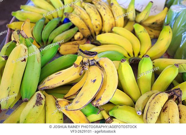 Bananas for sale on a fruit stand at a farmers market in Oahu Hawaii