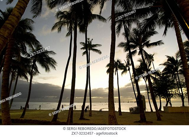 Sunset in the Beach of Waikiki Beach. O'ahu. Hawaii. Waikiki is most famous for its beaches and every room is just two or three blocks away from the sea