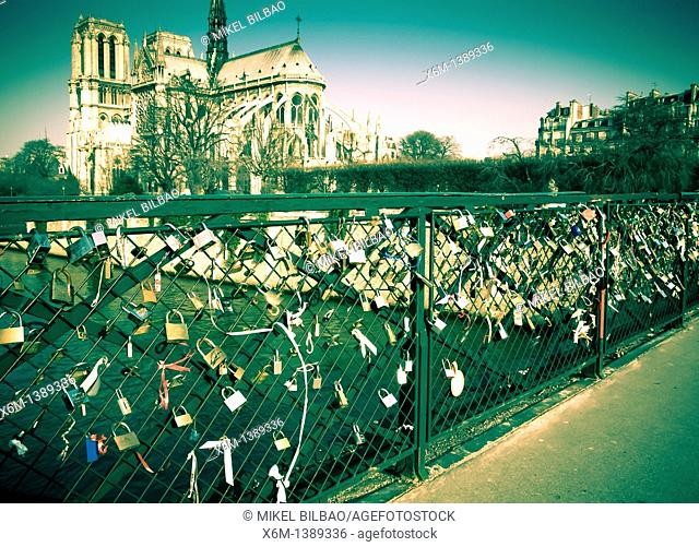 Notre Dame Cathedral and Seine river and bridge Pont des Arts with padlock  Paris, France, Europe