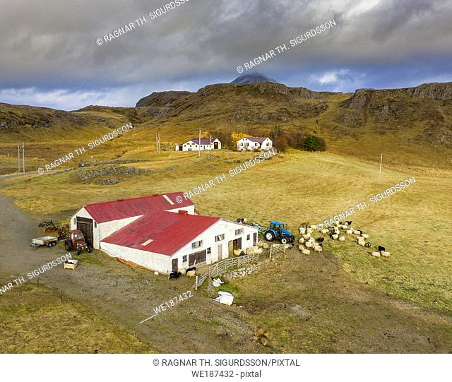 Sheep farm, Nordurardalur valley, Borgarfjordur, Western Iceland