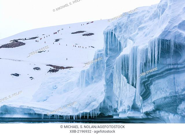 Hikers climb Danco Island with icicles on glacial iceberg in foreground, Antarctica
