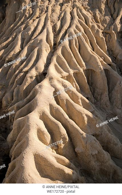 Barren ground eroded from rainwater runoff in Dinosaur Provincial Park, Alberta, Canada