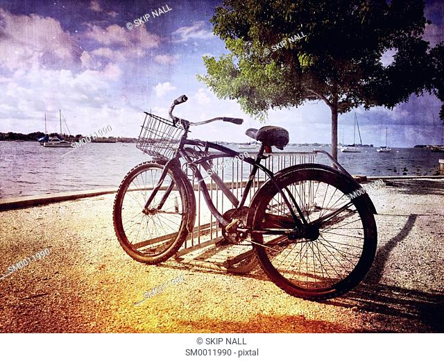 And old bicycle on the shore of Sarasota Bay in Florida