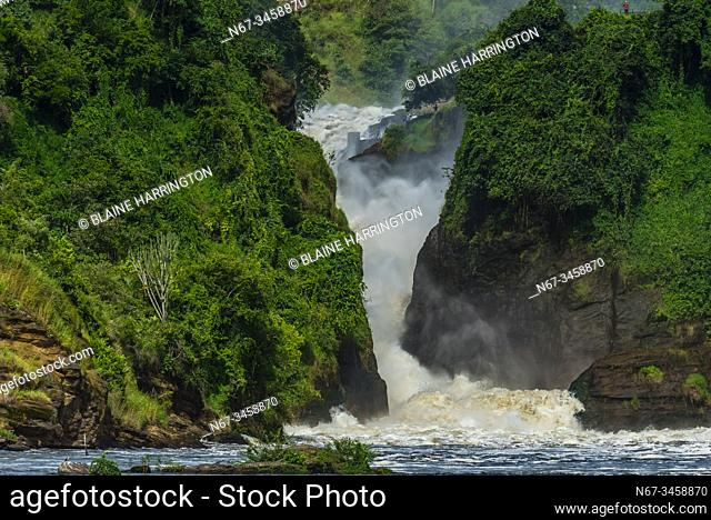 Murchison Falls, also known as Kabalega Falls, is a waterfall between Lake Kyoga and Lake Albert on the Victoria Nile in Uganda