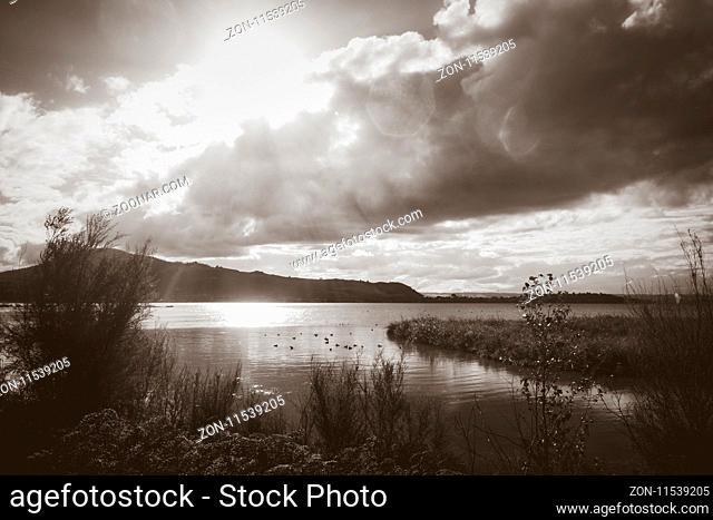 Rotorua lake view, New Zealand. Black and white picture