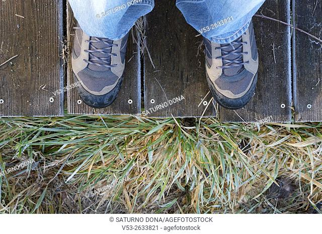 Downward view of hiking boots on board walk and moor grasses