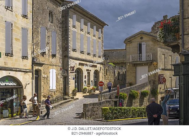 France, Nouvelle Aquitaine, Gironde. Saint Emilion. On of the area of the Bordeaux wines districts. (Dordogne river's valley)