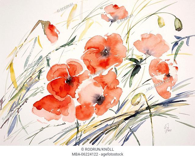 Watercolor by Waltraud Zizelmann, poppies, red poppy