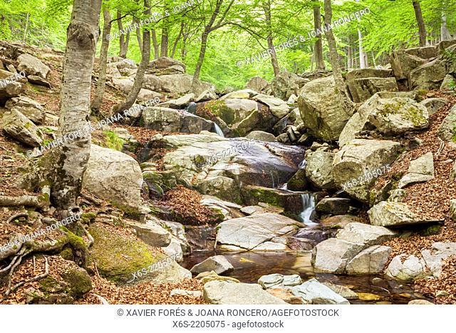 Santa Fe area at the Natural Park of Montseny, Barcelona, Spain