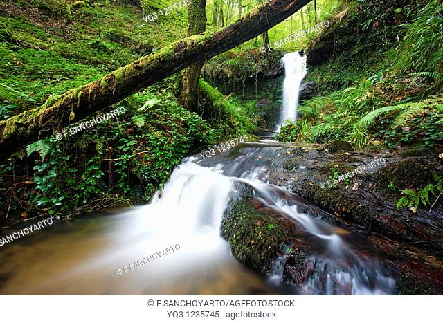 Brook, Callejamala. Otañes, Castro Urdiales, Cantabria, Spain