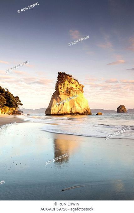 Te Hoho Rock a sea stack in Cathedral Cove at the Te Whanganui-A-Hei Marine Reserve, New Zealand