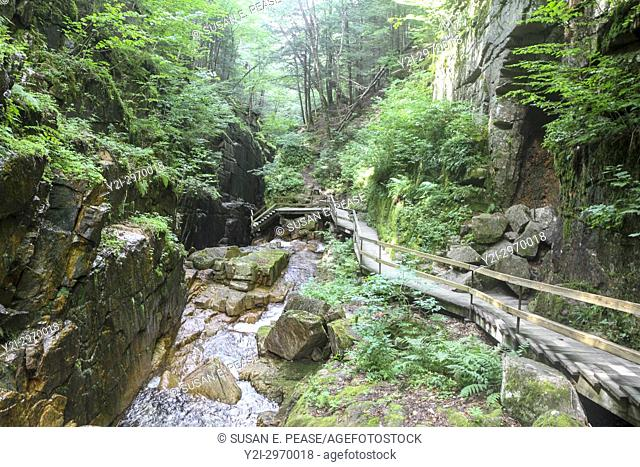 Walkway through the Flume Gorge, Franconia Notch State Park, New Hampshire, United States