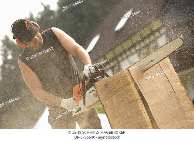 Chainsaw carver, Bergisches Land, North Rhine-Westphalia, Germany