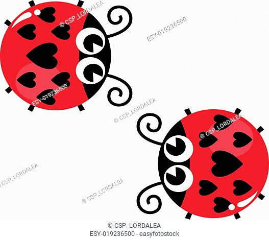 Valentine's love lady bugs pair isolated on white