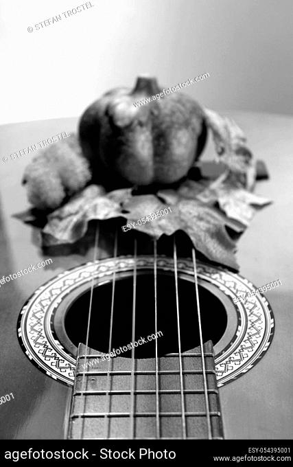 Guitar slit hole with autumnal decoration in the background in black and white