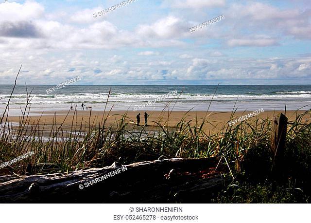 Beautiful Day of the Oregon Coast
