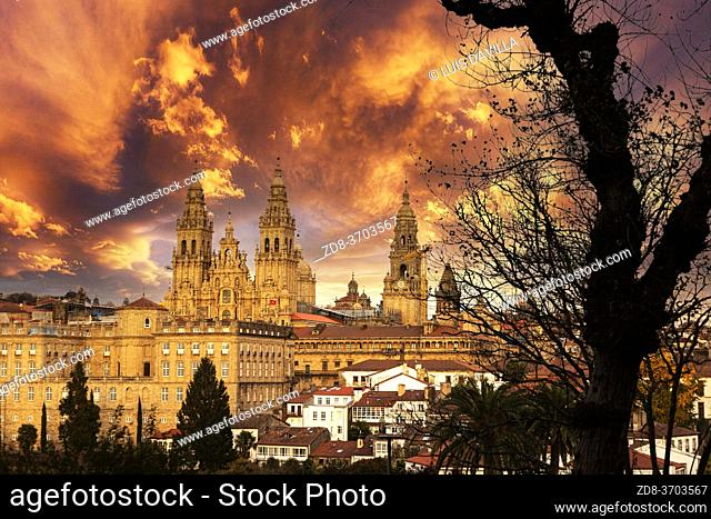 santiago de compostela panoramic with the cathedral from La alameda garden. galicia. spain