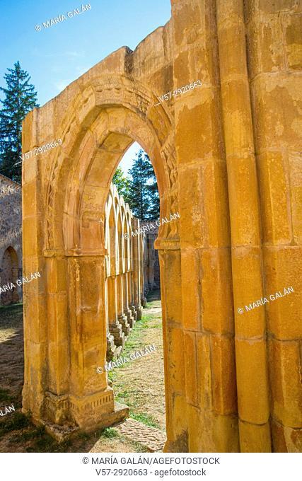 Arcade of the Romanesque cloister. San Juan de Duero monastery, Soria, Spain