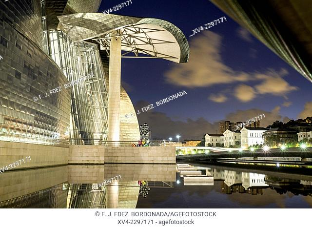 Guggenheim Museum Bilbao by night. Biscay, Basque Country, Spain
