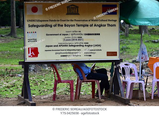 Safeguarding of the Bayon temple of Angkor Thom, Siem Reap province, Cambodia, South Esat Asia