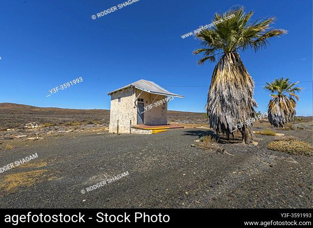 The deserted building with neglected palm trees in the rural Great Karoo of South africa. office