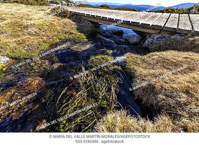 Wooden walkway over a stream on Penialara National Park. Madrid. Spain. Europe