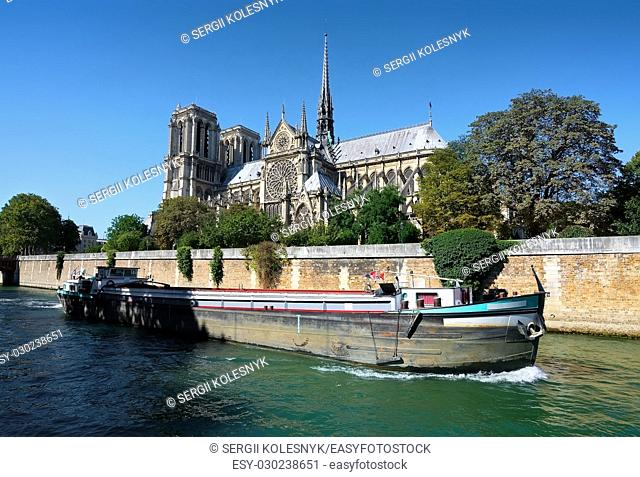 View on Notre Dame de Paris at summer day, France