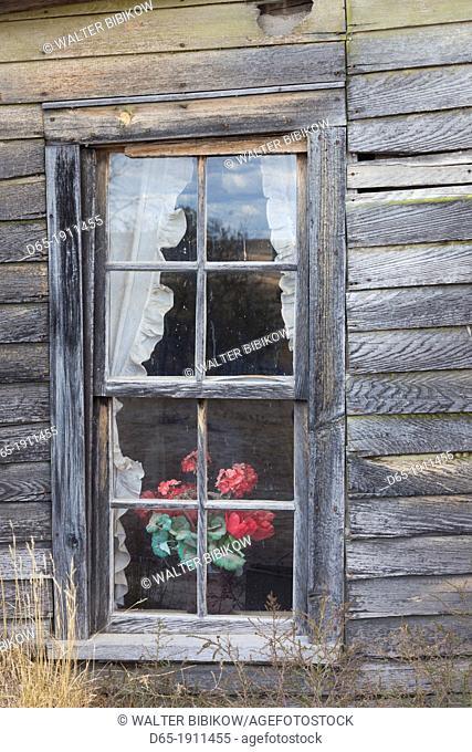 USA, South Dakota, Cactus Flat, Prairie Homestead, homesteader sod house, window detail