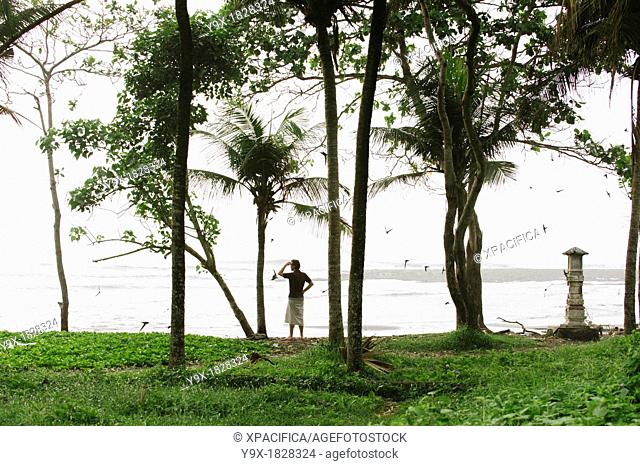 A man standing in the shade of tall trees looks out over the beach