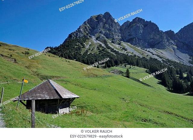 Alphütte mit Schafnase