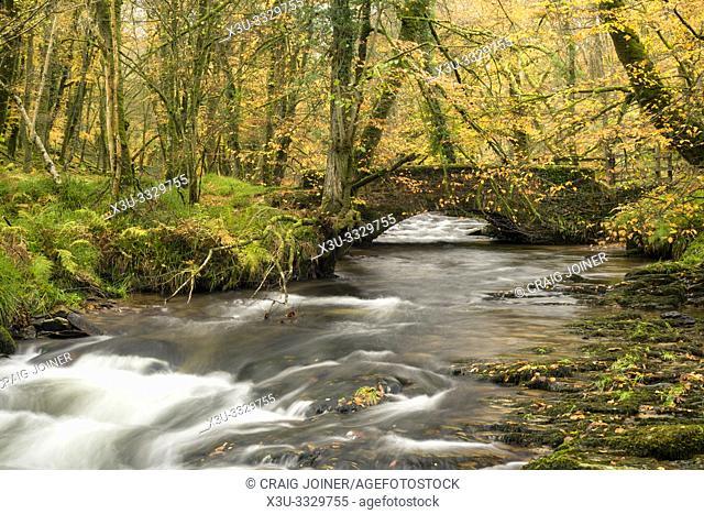 Castle Bridge over Dane's Brook in Exmoor National Park near Dulverton, Somerset, England