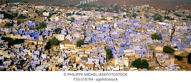 Jodhpur, the blue city. Rajasthan. India