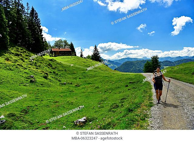 young woman on the way to Teufelsgasse (hiking path), Tyrol, Austria