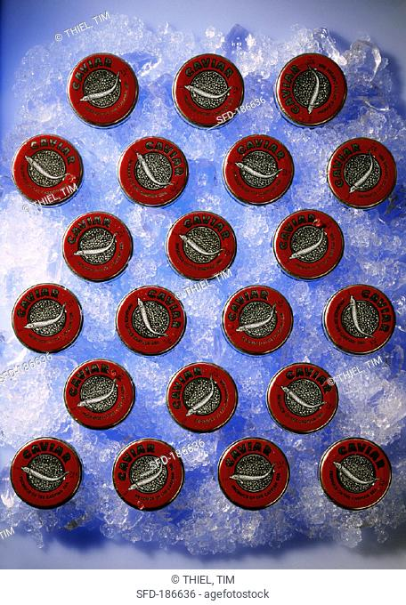 Still life with 21 tins of 'Malossol' caviare on ice