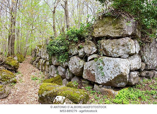 The archaeological site called Orto della Regina, where traces of the Megalithic Sannite wall remain  mount frascara  roccamonfina  province of caserta...